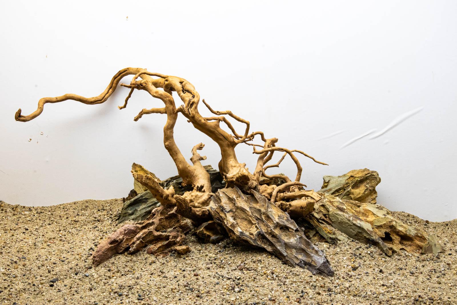 Moorkien mit Drachensteinen beschwert