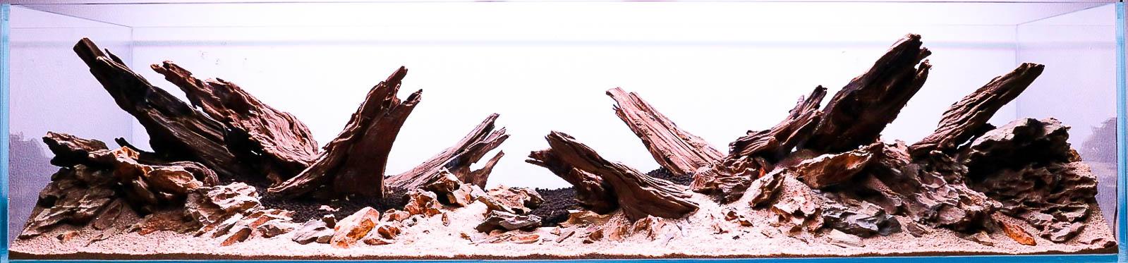 Unterwasserlandschaft im Aquascape mit Yati Holz