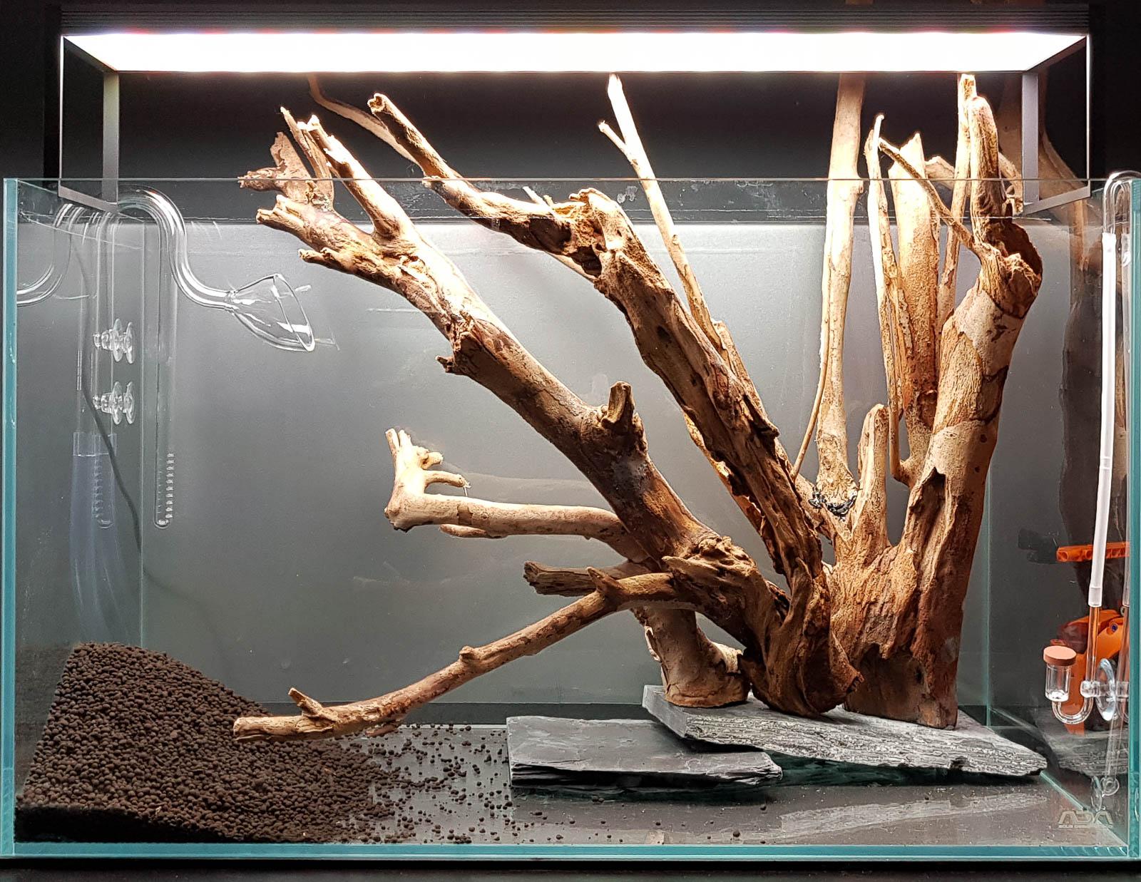 Holz mit Schiefer im Aquarium verschrauben