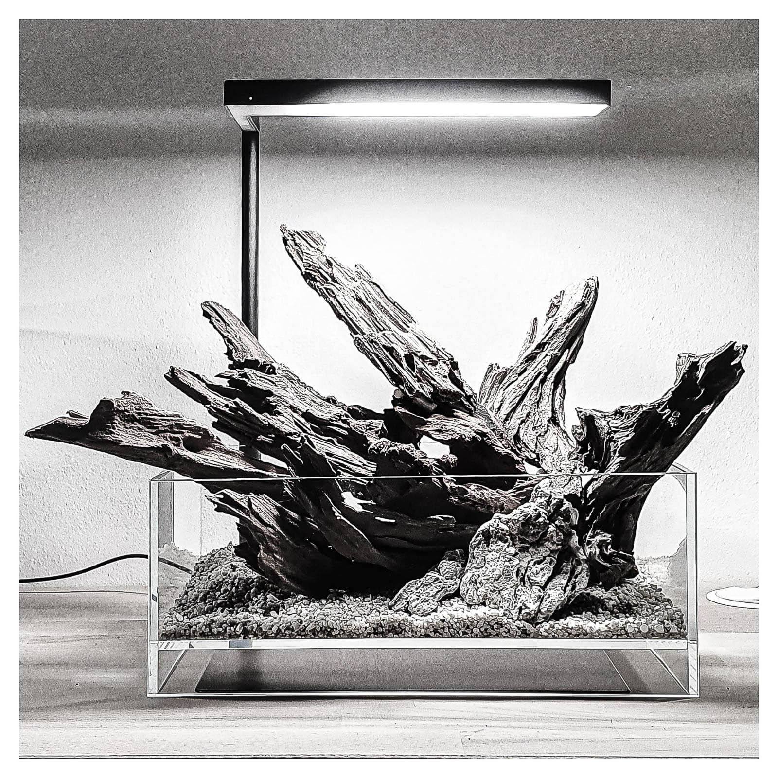 Yati Holz Skulptur für ein DOOA Neo Glass Air